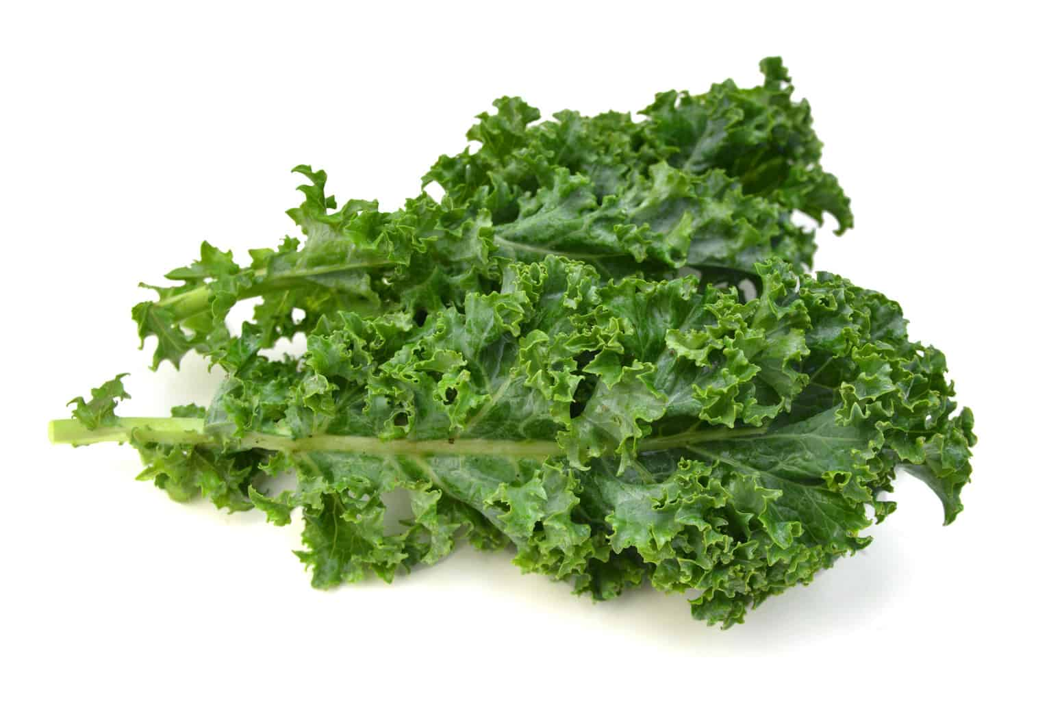 Kale Nutrition Profile and Recipes: A Healthy Vegetable ...