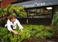 Chefs Who Cook Well and Do Good: Nora Pouillon