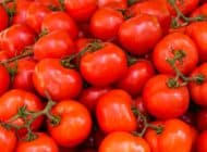 Tomatoes and Prostate Cancer