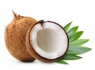 Coconut: Food Obsession: The Salt : NPR