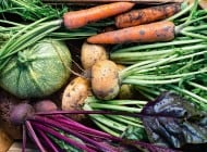 """Guide to """"Growing"""" it Anywhere: How you can Grow Your Own Fruits and Vegetables Whether You're Urban or Suburban"""